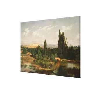 Campo con un río Manzanares Lona Estirada Galerias