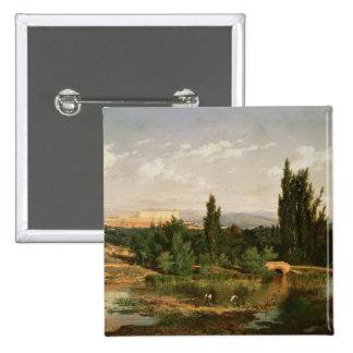 Campo con un río Manzanares Pin
