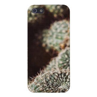 Campo de cactus, fotografía botánica roja caliente iPhone 5 carcasa