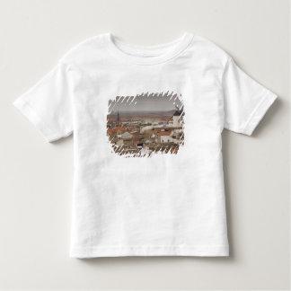 Campo de Criptana, antique La Mancha windmills 6 T Shirts