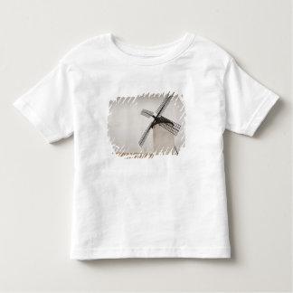 Campo de Criptana, antique La Mancha windmills T Shirt