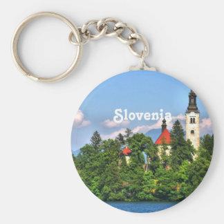 Campo de Eslovenia Llavero Redondo Tipo Pin