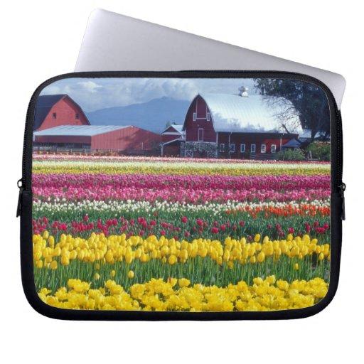 Campo de exhibición del tulipán mangas portátiles