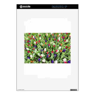 Campo de flor con las diversas flores skin para el iPad 2