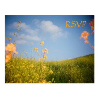 Campo de flor de la postal de RSVP