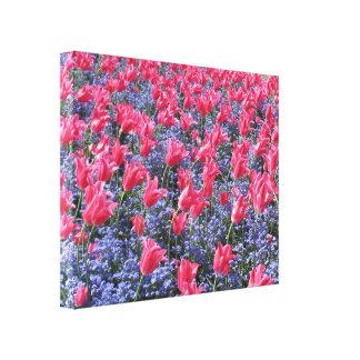 Campo de flor rosado y púrpura lienzo envuelto para galerias
