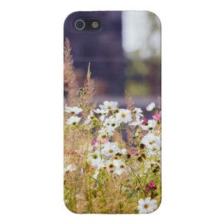 Campo de flor salvaje iPhone 5 protector