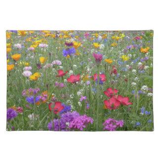 Campo de flores coloridas manteles