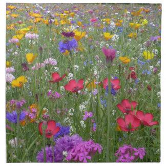 Campo de flores coloridas servilleta