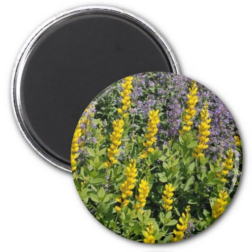 Campo de flores imán redondo 5 cm