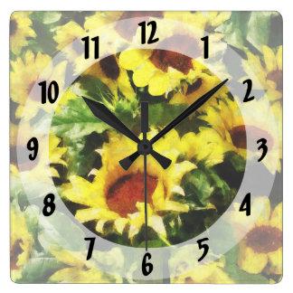 Campo de girasoles reloj cuadrado