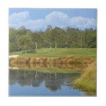 Campo de golf en la teja verde
