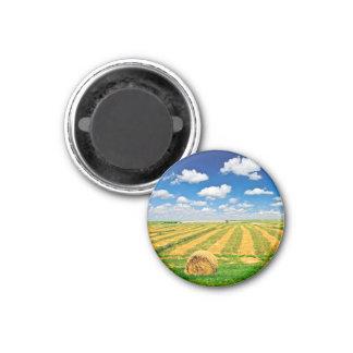 Campo de granja del trigo en la cosecha imán redondo 3 cm
