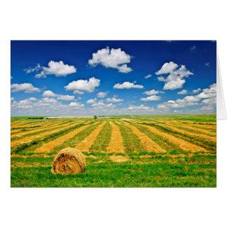 Campo de granja del trigo en la cosecha tarjeta pequeña