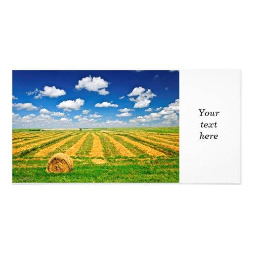 Campo de granja del trigo en la cosecha tarjeta personal con foto