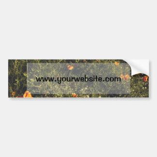 Campo de hierba con las flores salvajes y las etiqueta de parachoque