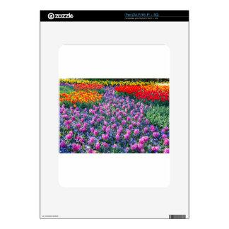 Campo de jacintos rosados y de tulipanes rojos calcomanía para el iPad