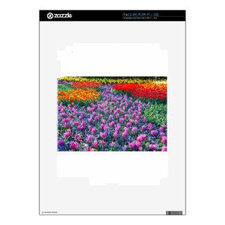 Campo de jacintos rosados y de tulipanes rojos skins para eliPad 2