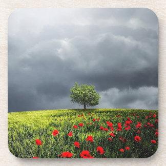 Campo de la amapola y cielo nublado posavasos