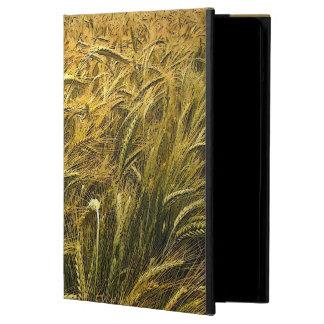 Campo de la caja del aire del iPad del grano