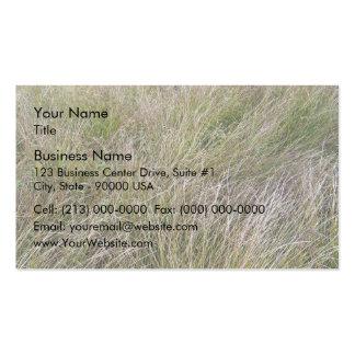Campo de la hierba seca y del seto amarillos plantillas de tarjeta de negocio