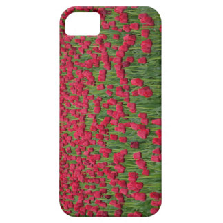 Campo de la primavera de la caja roja del iPhone Funda Para iPhone SE/5/5s