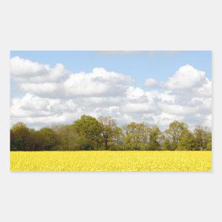 Campo de la rabina amarilla pegatina rectangular