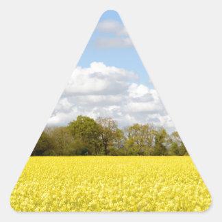 Campo de la rabina amarilla pegatina triangular