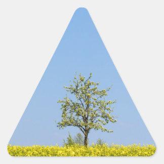 Campo de la rabina con el manzano y el cielo azul pegatina triangular