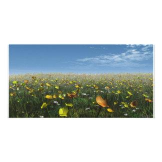 Campo de la tarjeta de la foto de las flores tarjetas fotograficas