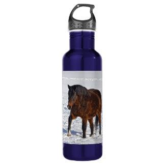 Campo de la yegua y Nevado del invierno de la Botella De Agua