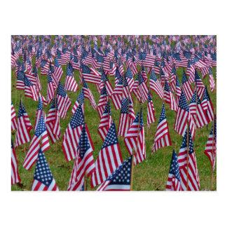 Campo de las banderas de los E.E.U.U. Postales