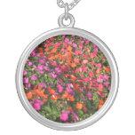 Campo de las flores anaranjadas rosadas púrpuras d colgantes