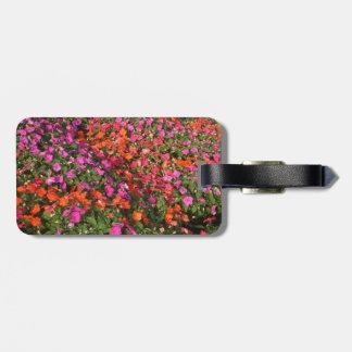 Campo de las flores anaranjadas rosadas púrpuras d etiquetas maleta
