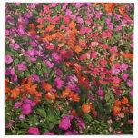 Campo de las flores anaranjadas rosadas púrpuras d servilletas