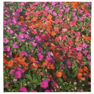 Campo de las flores anaranjadas rosadas púrpuras d servilleta de papel
