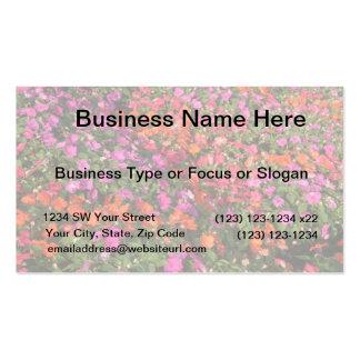 Campo de las flores anaranjadas rosadas púrpuras tarjetas de visita