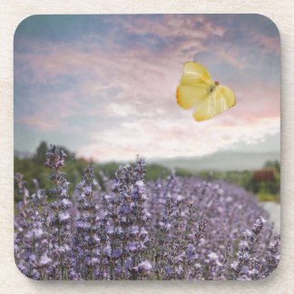Campo de las flores de la lavanda, cielo azul, posavasos de bebidas