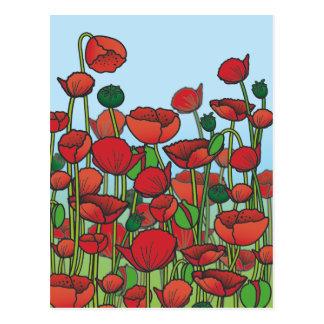 Campo de las flores rojas de la amapola postales