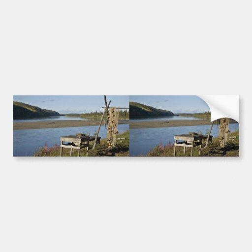 Campo de los pescados de la subsistencia en el río etiqueta de parachoque