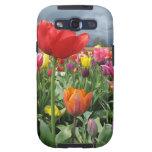 Campo de los tulipanes samsung galaxy s3 protectores