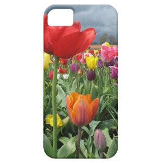 Campo de los tulipanes funda para iPhone SE/5/5s
