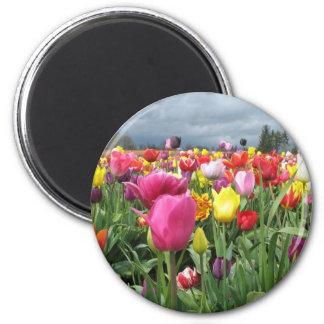 Campo de los tulipanes imán redondo 5 cm