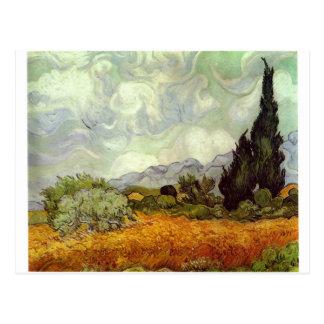 Campo de maíz con los árboles de Cypress Tarjetas Postales