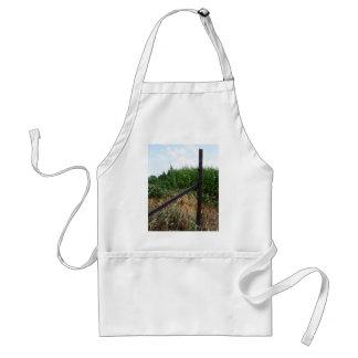 Campo de maíz detrás de la cerca delantal