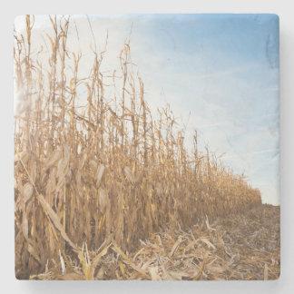 Campo de maíz en parte cosechado posavasos de piedra