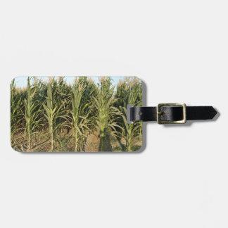 Campo de maíz etiquetas maleta
