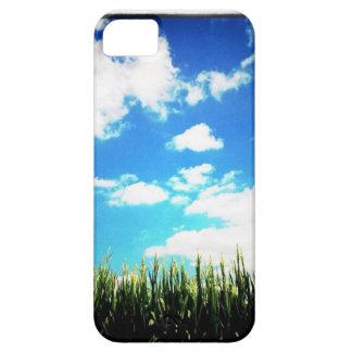Campo de maíz funda para iPhone SE/5/5s