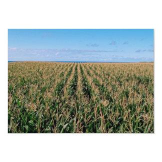 """Campo de maíz invitación 5"""" x 7"""""""
