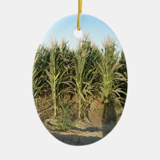 Campo de maíz ornamento de reyes magos
